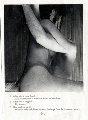 43.jpg