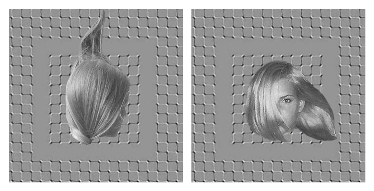 imp-kerr-illusion.jpg